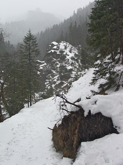 Dolina Białego
