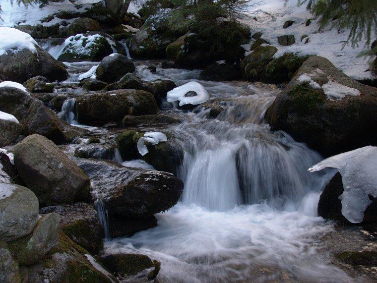 Olczyski Potok