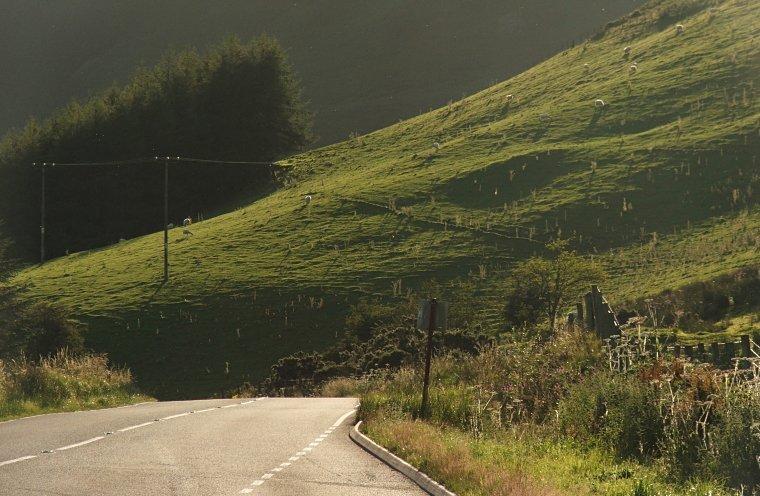 Walijskie pagórki